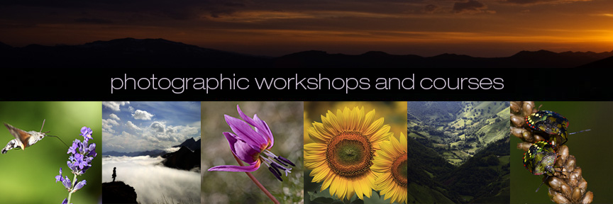 Photographic workshops in france Landscape and nature photography-John Erwood